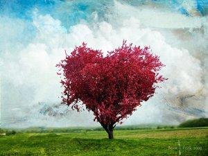 bible heart tree (1)